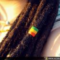 Dreadlocks rastafari