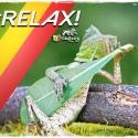 Relax vidarasta